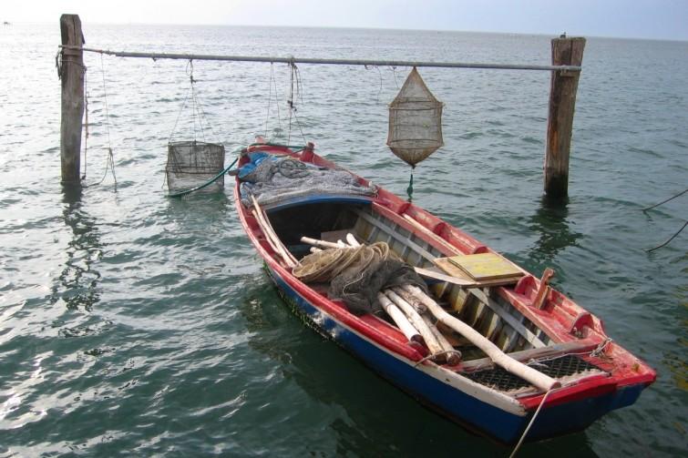 Tour Vall da pesca Laguna di Venezia